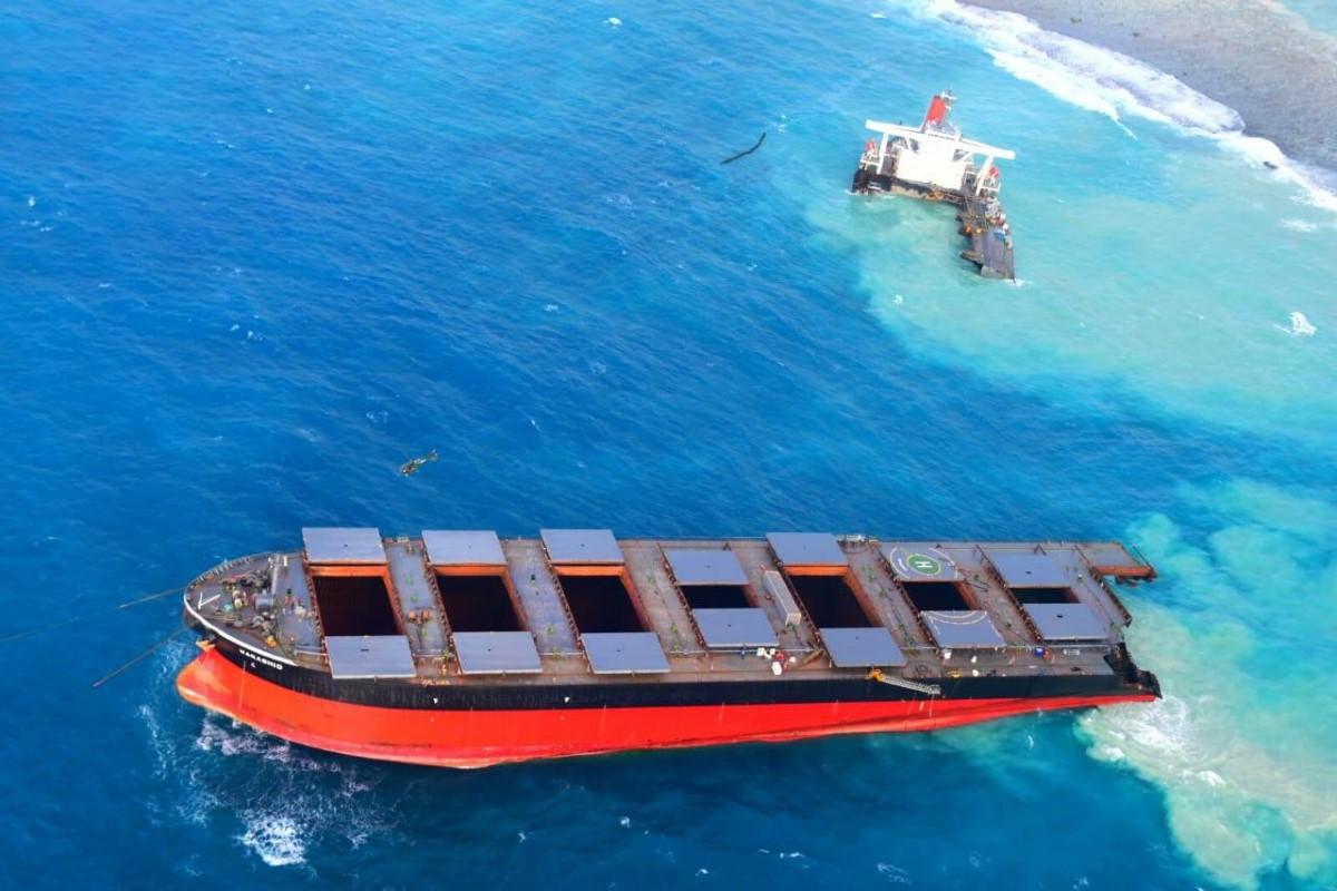 Sabordage du Wakashio : Les cachalots au large de l'île Maurice en danger