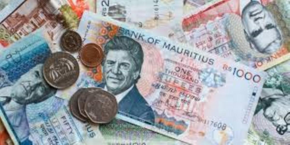 De l'argent qui sort de terre: Rs 427 400 lors d'une saisie à Mon-Goût, Pamplemousses