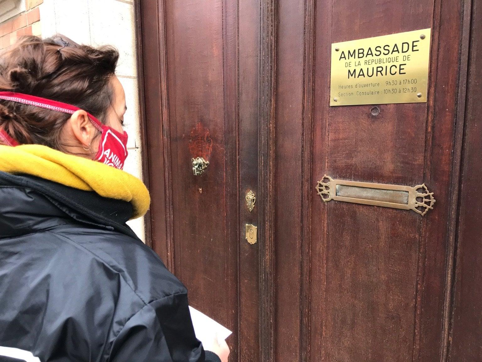 Exploitation commerciale des singes de l'île Maurice: Animal Rights manifeste devant l'ambassade mauricienne à Bruxelles