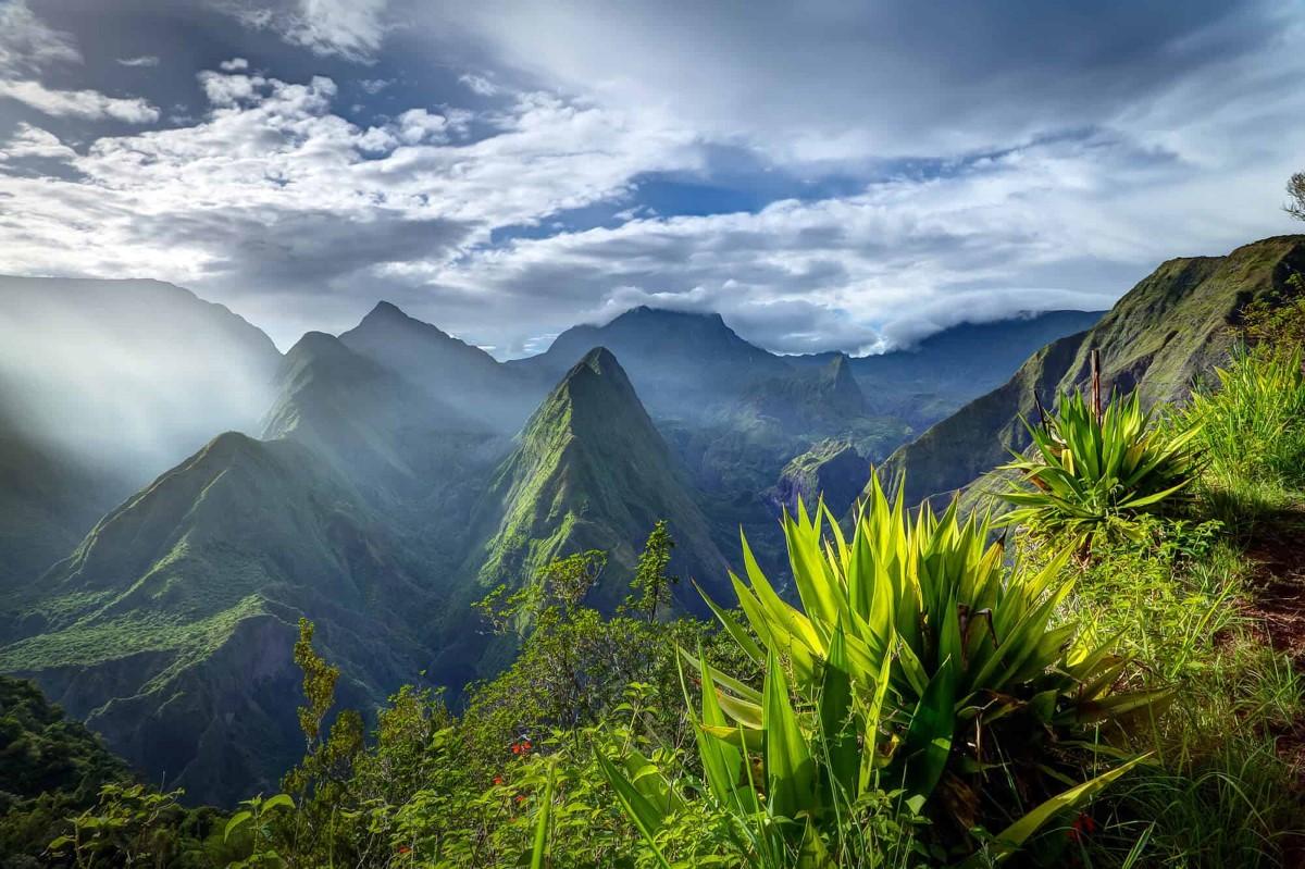 Les administrateurs d'Air Mauritius : « toutes les destinations desservies, à l'exception de l'île de la Réunion, étaient déficitaires »