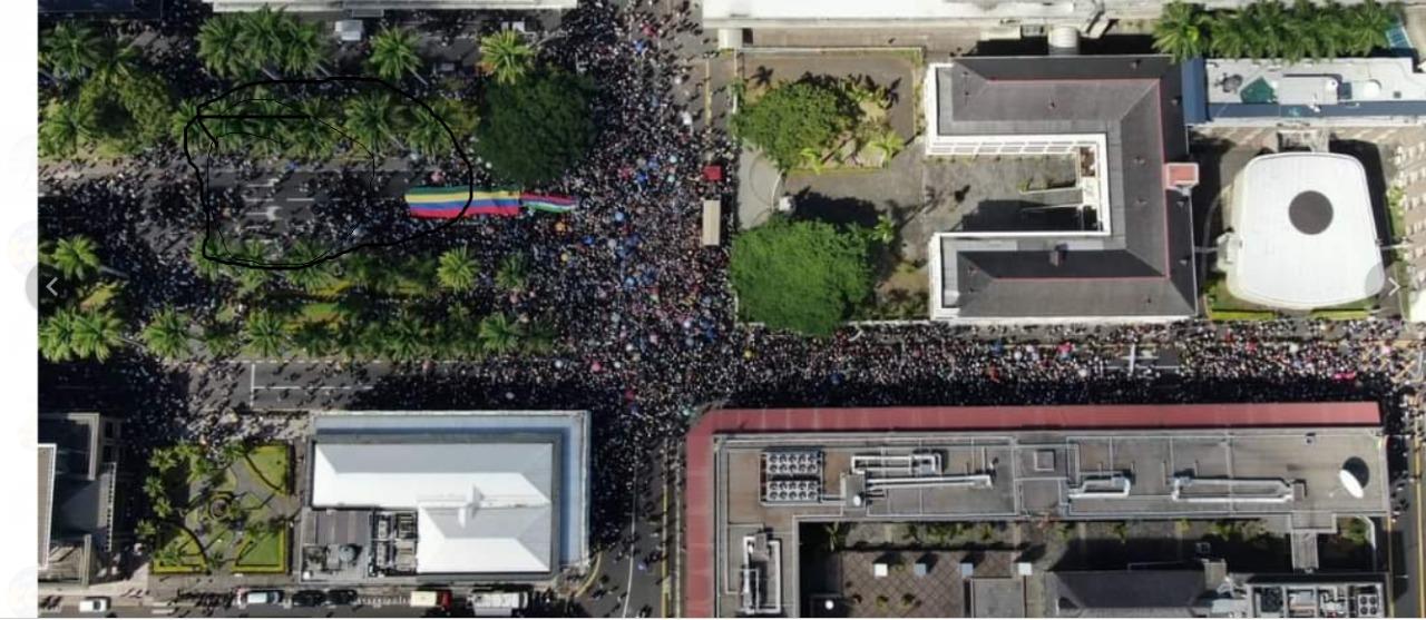 Marche citoyenne du 13 février : Les caméras de Traffic Watch manipulées ?