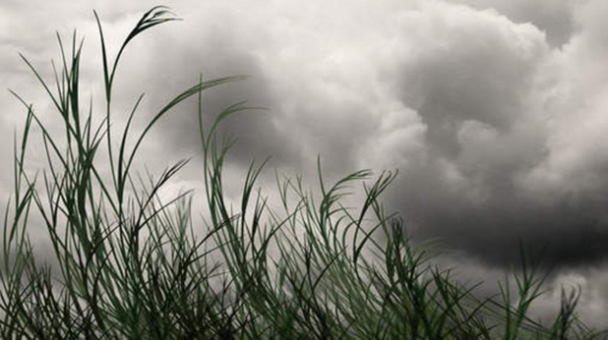 Dégradation du temps : pluie, brouillard et orages
