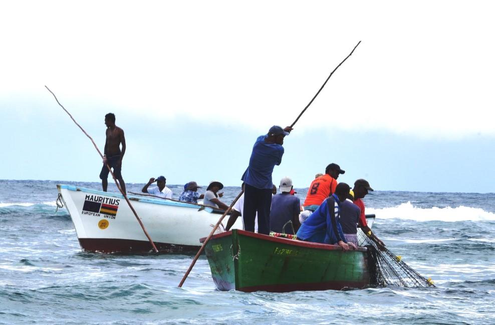 Les opérateurs furieux de la décision d'importer 400 tonnes de poisson