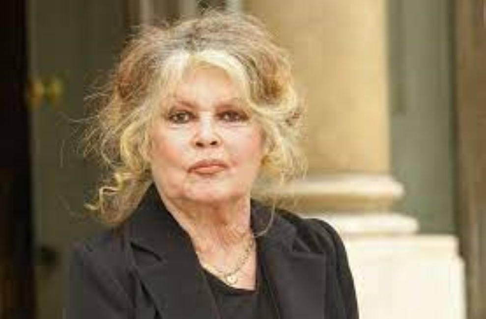 Maltraitance animale à l'île Maurice, la Fondation Brigitte Bardot s'adresse au Premier ministre