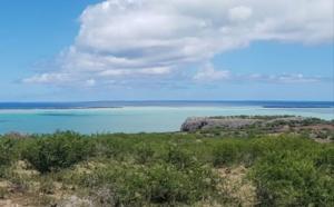 Covid-19 : Un premier décès suspect à Rodrigues