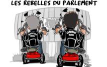 [KOK] Le dessin du jour : La Rebelle Attitude