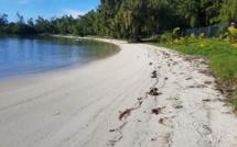 [Vidéo] La Caravane de l'Amitié était sur la plage d'Anse la Raie