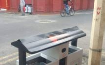 Des Eco-Bins à Chinatown