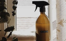 Reduce Waste Mauritius : Window Cleaner • zéro waste recipe !