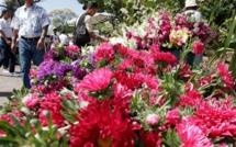Toussaint : des milliers de Mauriciens attendus dans les cimetières