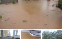 [Vidéo] Accumulations d'eau provoquées par les fortes pluies à Pamplemousses
