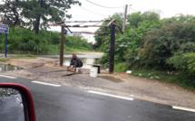 Image du jour : Il construit un abribus à Pointe-aux-Sables