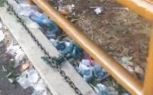 [Vidéo] Le temple Kaylasson à Sainte Croix après le Maha Shivaratree