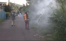 Epidémie de dengue à Vallée des prêtres : Certains parents refusent d'envoyer leurs enfant à l'école
