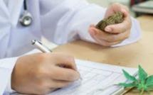 [Vidéo] Les Seychelles favorable à l'usage du cannabis thérapeutique