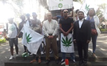 """Une """"petite"""" marche pour le cannabis à usage médical à Port-Louis"""