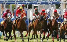 Cinq chevaux font l'objet d'un Attachment Order