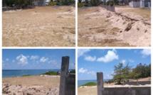"""Poste Lafayette : Sur la plage, la construction d'un """"mur"""" fait polémique"""