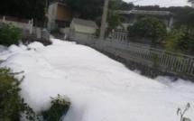 📷 Sable Noir : Une montagne de mousse blanche observée dans l'eau de la rivière