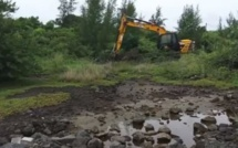 ▶️ Destruction d'un site unique à Grand-Gaube en cours