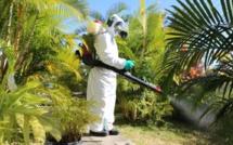 Epidémie de dengue : 13 cas recencés à Maurice