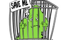 [KOK] Le dessin du jour : Save Me