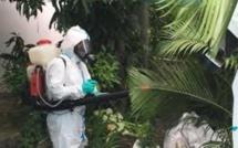 Epidémie de dengue : 84 cas actifs recensés sur l'île