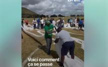 [Vidéo Brut Nature] Des milliers de volontaires se mobilisent à l'île Maurice pour lutter contre la marée noire