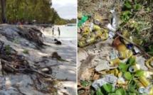 Sur la plage de Belle Mare érosion et divers détritus abandonnés par les pique-niqueurs du dimanche