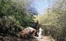 Tamarin : Un rocher de plusieurs tonnes se détache du chantier de Legend Hill