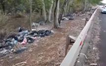 "[Vidéo] The ""rubbish road"" Terre Rouge-Verdun"