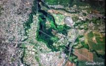 20 hectares de forêt en moins à l'île Maurice