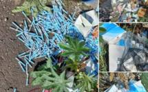 Rose-Hill : A Camp Levieux, du matériel médical abandonné en pleine nature