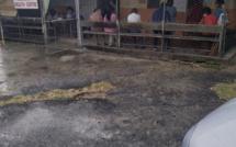 Au centre communautaire de Pointe-Aux-Sables, les visites se font les pieds dans le sable...